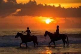 Sunset Horse Riding by Tania Araujo